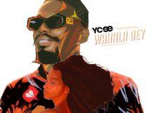 Ycee - Wahala Dey Mp3 Download