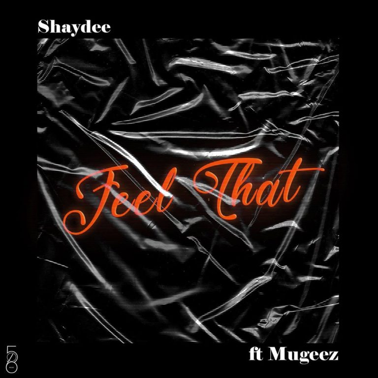 Shaydee - Feel That Ft Mugeez Mp3 Download