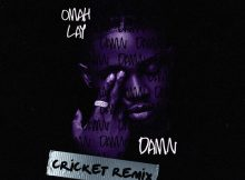 Omah Lay - Damn (Cricket Remix)