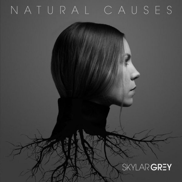 Skylar Grey - Intro Wilderness MP3 DOWNLOAD