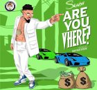 DOWNLOAD MP3 Skiibii - Are You Vhere