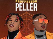 Seyi Vibez - Professor Peller Ft. Zlatan