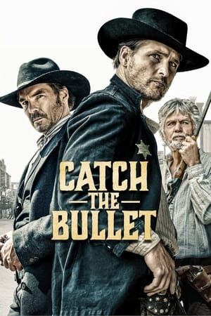 Movie: Catch the Bullet (2021)