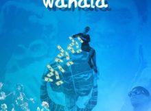 DOWNLOAD MP3 Buju - Wahala